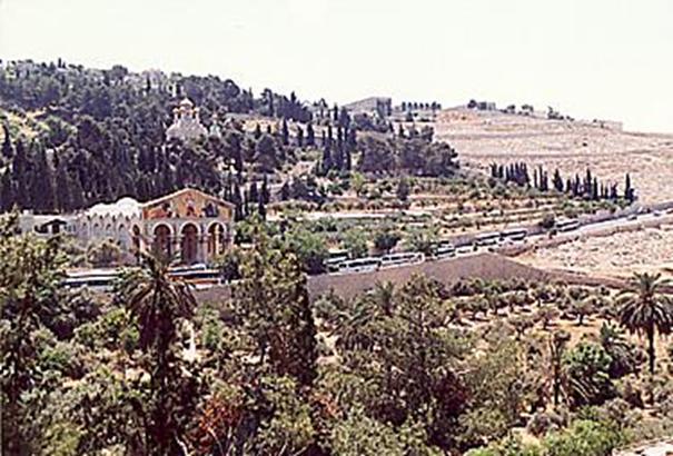 Getsemani - bazylika Konania